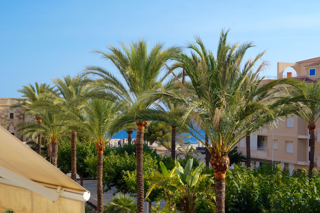 The apartment is ideal for a single or a couple that wants to live in town and be able to walk to ,Spain